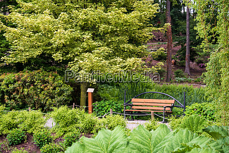 sitz in der natur leer stuhl