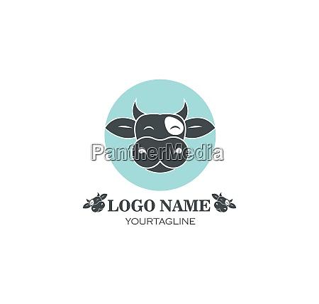 kuh logo vektor illustration vorlage