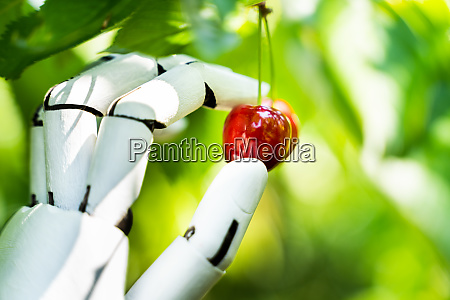 ai farmer assistant picking frisches obst