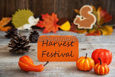 label mit herbstdekoration text harvest festival