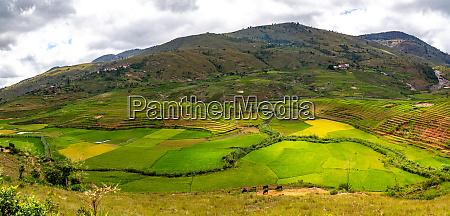 landschaftsaufnahmen der insel madagaskar