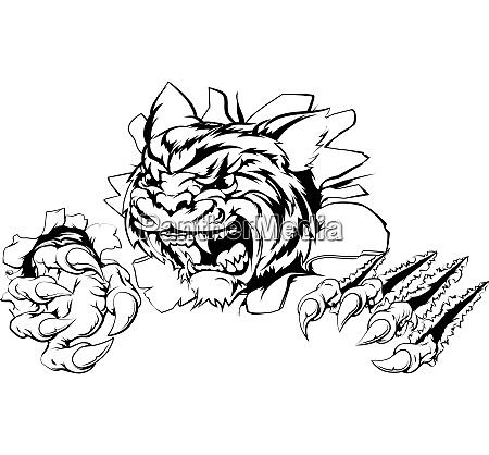 tiger reisst durch hintergrund