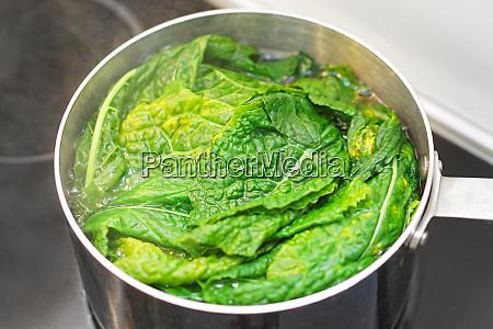 kochen von mangold