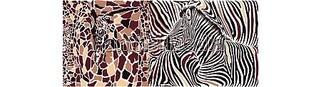 abstrakte textur von giraffe und zebra