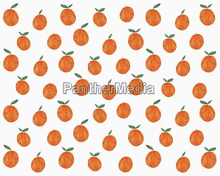abbildung von orangen auf weissem hintergrund