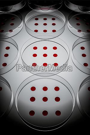 blood, sample, tested, on, petri, dish - 28729437