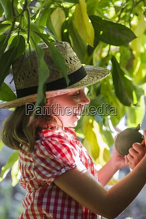 laechelnde maedchen picking avocado im garten
