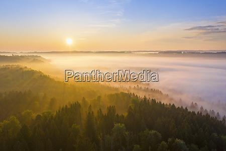 sonnenaufgang mit nebel im isartal bei