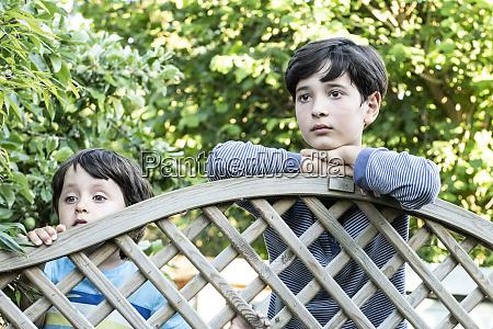 portraet von zwei braunhaarigen jungen die