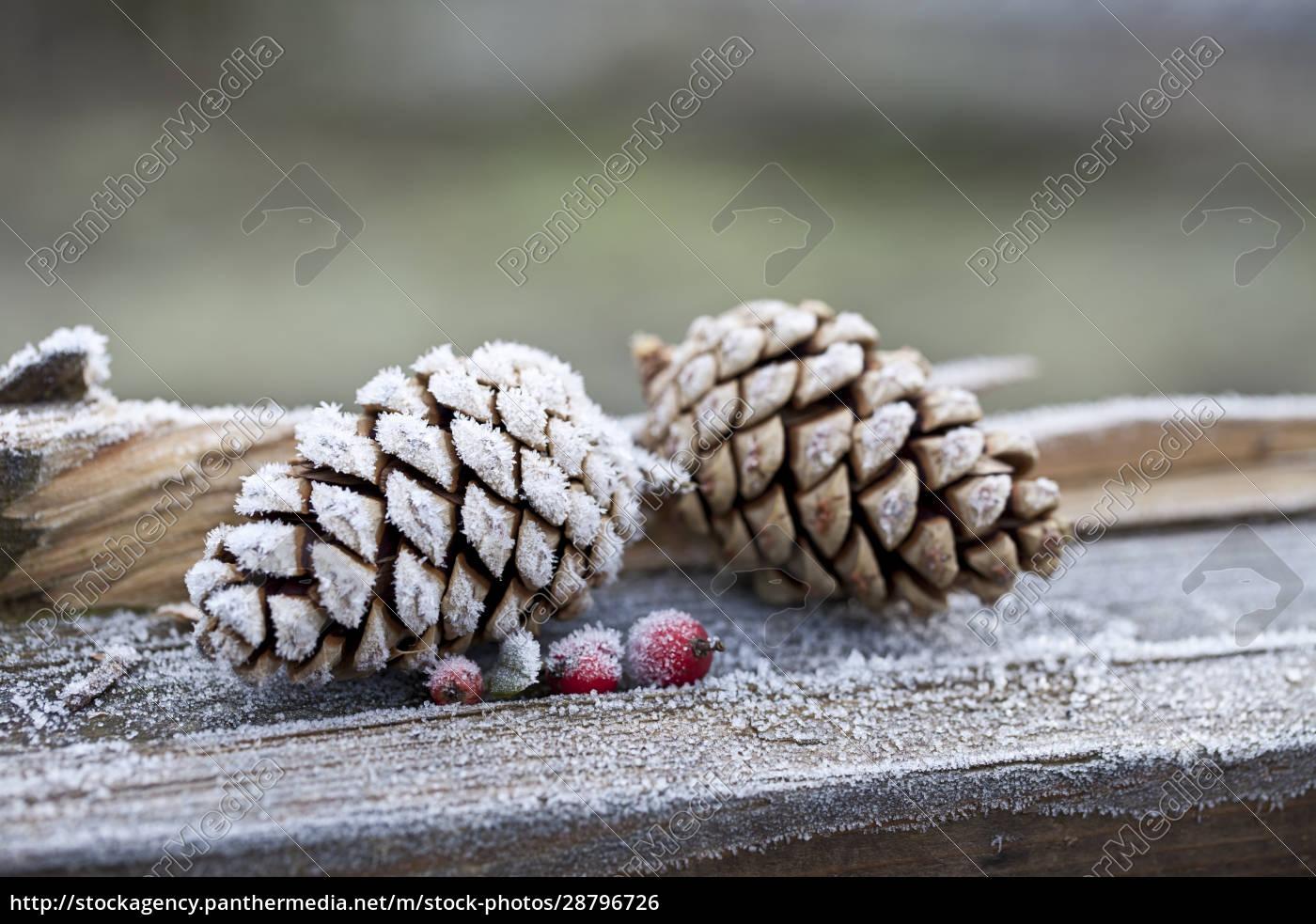hygge, weihnachten, winter, stillleben - 28796726