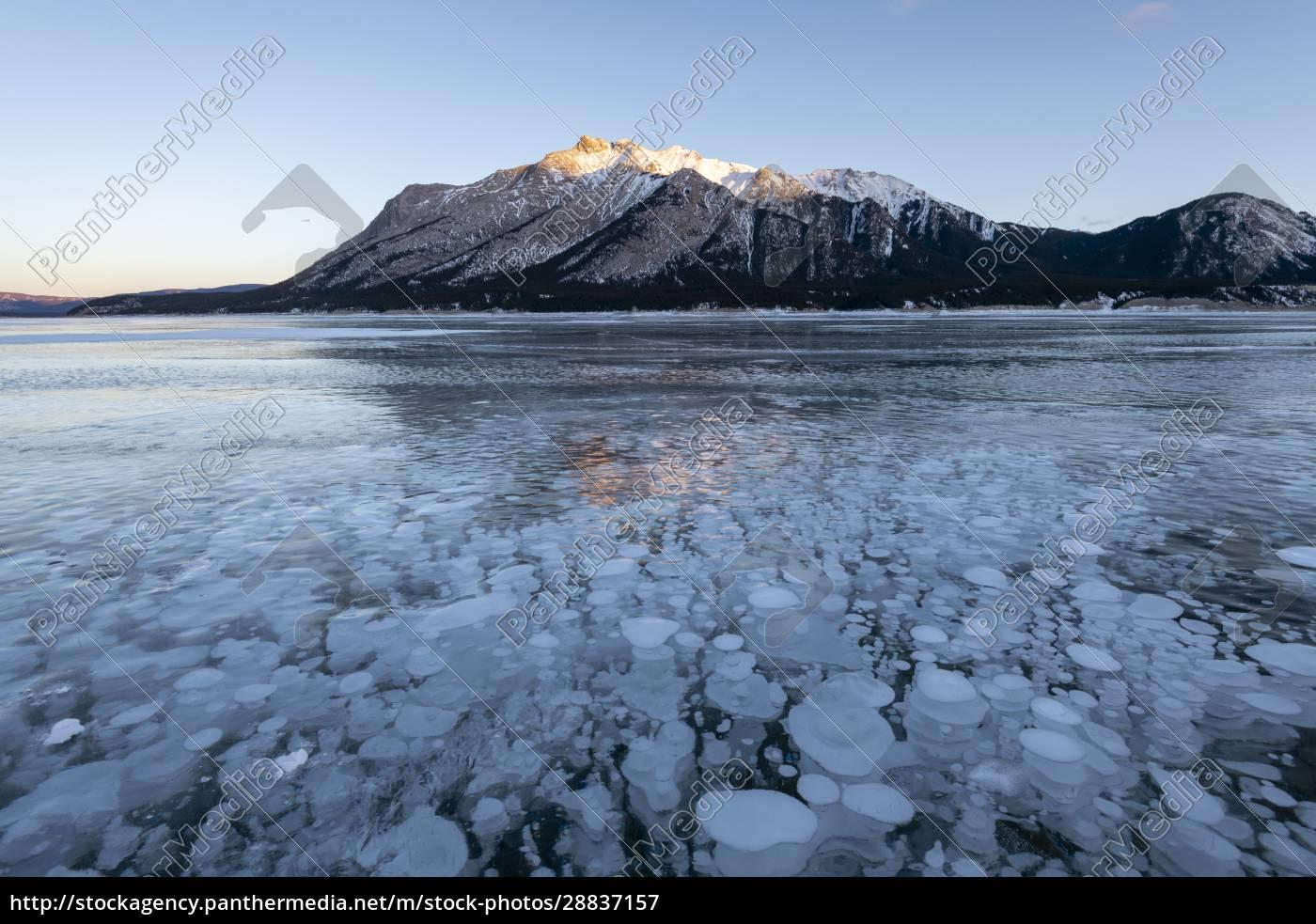methangasblasen, am, lake, abraham, kootenay, plains, alberta, canadian, rockies, kanada, nordamerika - 28837157