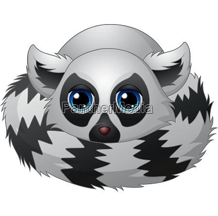 cartoon lemur legt sich hin
