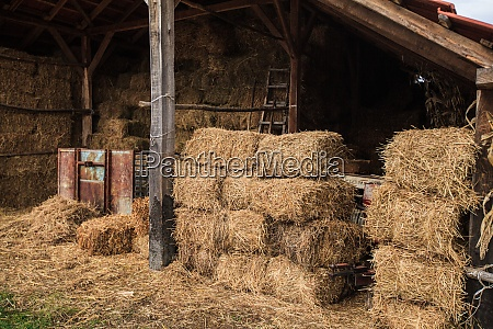 heuballen auf dem landwirtschaftlichen bauernhof
