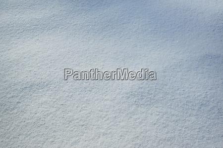 Medien-Nr. 28921089