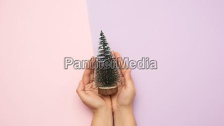 haende halten weihnachten dekor gruener baum