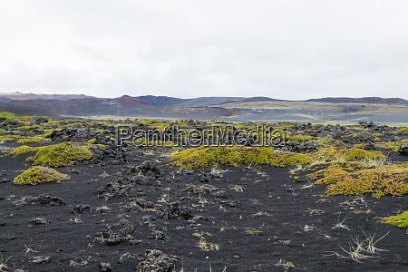 island landschaft in der naehe von