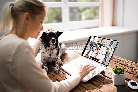 video konferenz webinar call