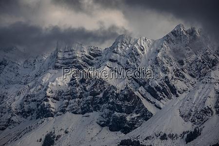 tolle winterlandschaft mit schneebedeckten fichten frostiger