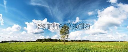 Medien-Nr. 28978996