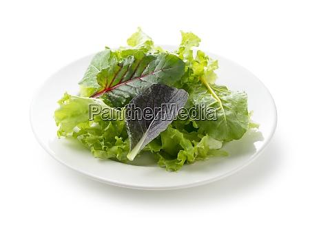 verschiedene salatblaetter auf dem teller