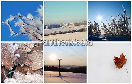 winter foto collage
