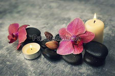 spa und wellness orchideenblumen mit massagesteinen