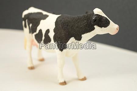 black and white animals thema