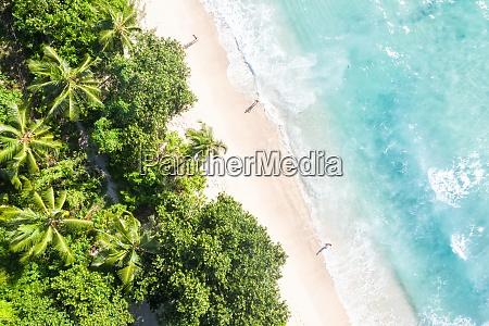 seychellen takamaka strand urlaub ozean palmen