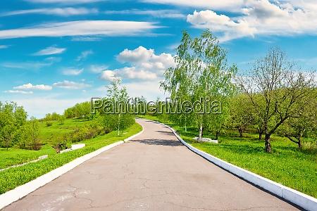 asphaltstrasse im park an einem sonnigen
