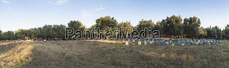 Medien-Nr. 29114141