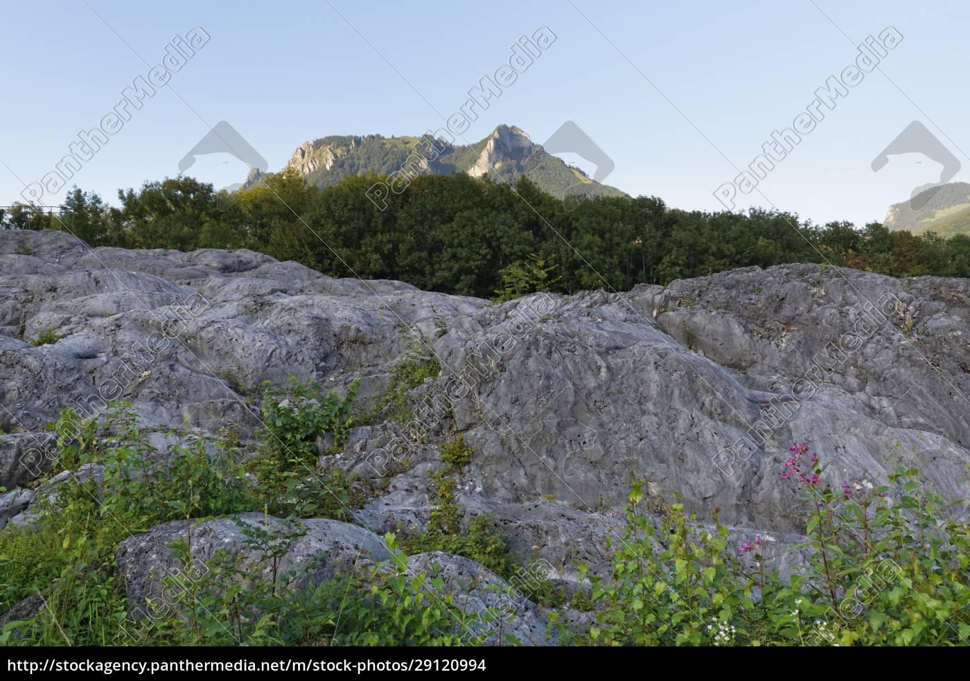 germany, , bavaria, , upper, bavaria, , flintsbach, am - 29120994