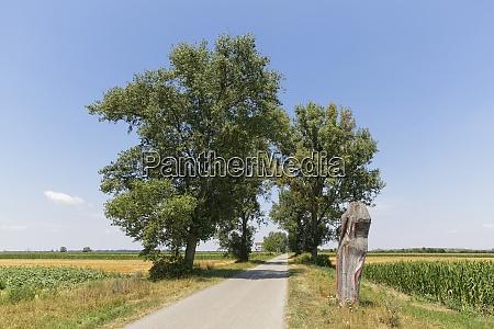OEsterreich burgenland andau landstrasse