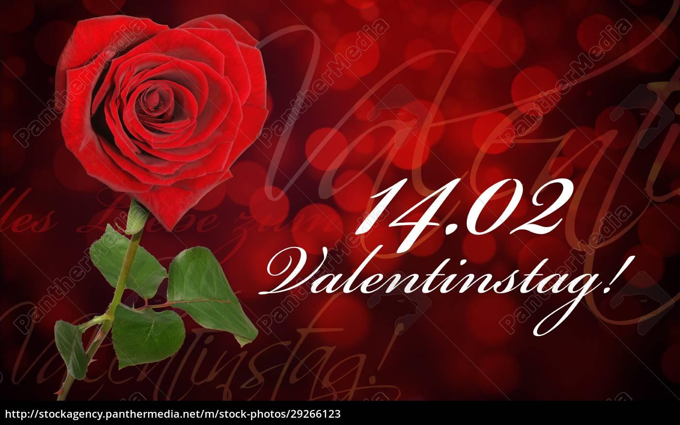schöne, rose, hintergrund, für, valentinstag - 29266123
