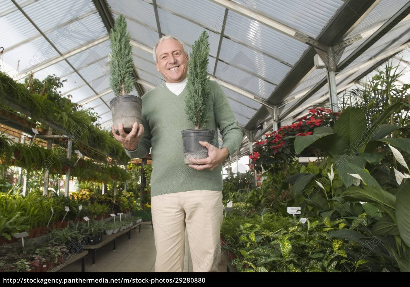 man, holding, potted, plants, in, a - 29280880