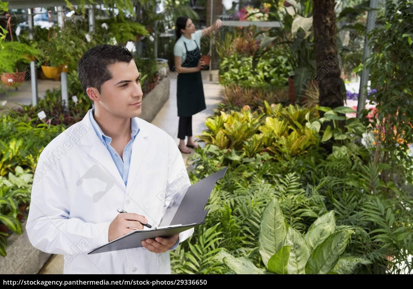 wissenschaftler, untersucht, pflanzen, in, einem, gewächshaus - 29336650