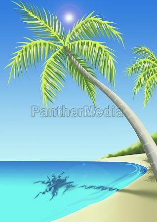 palmen haengen ueber dem strand
