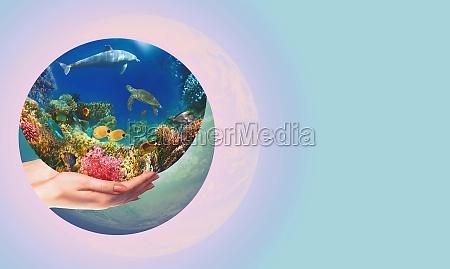 globus in menschlicher hand gegen blauen