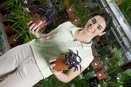 kunde, hält, topfpflanzen - 29404202
