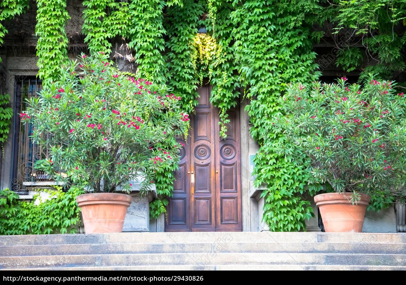 green, real, estate - 29430826