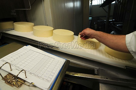 kaeseherstellung und kaeseverarbeitung in der industriellen