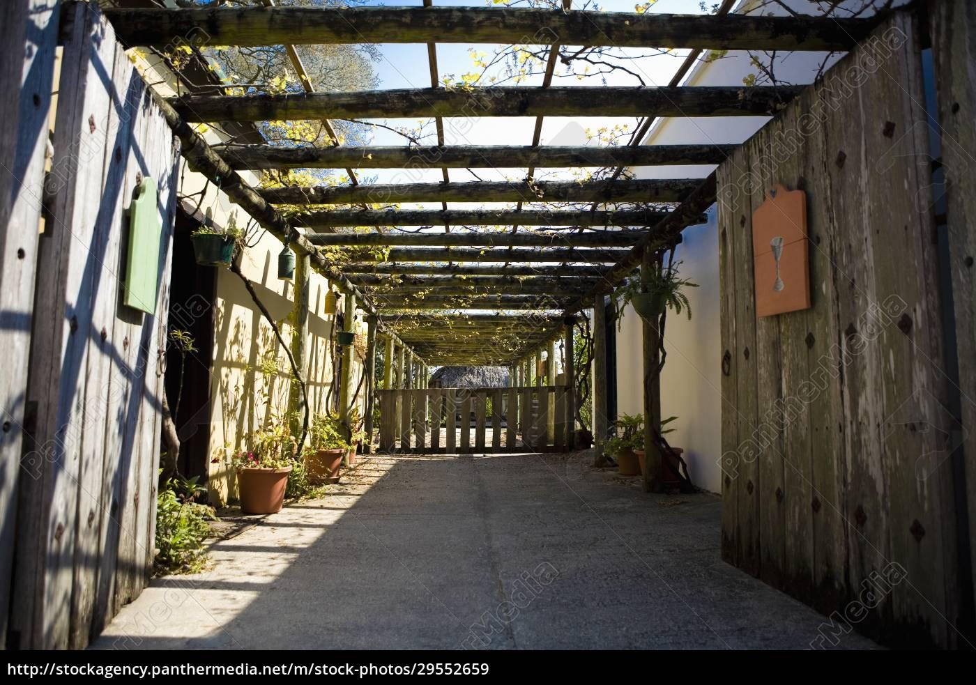 topfpflanzen, in, einem, gewächshaus - 29552659