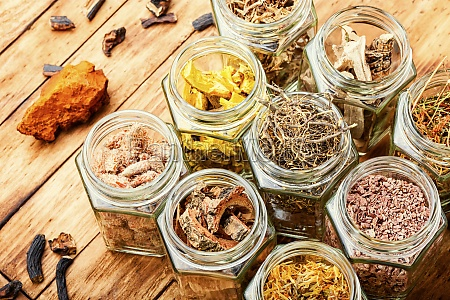 alternative medizin konzept oder kraeutermedizin