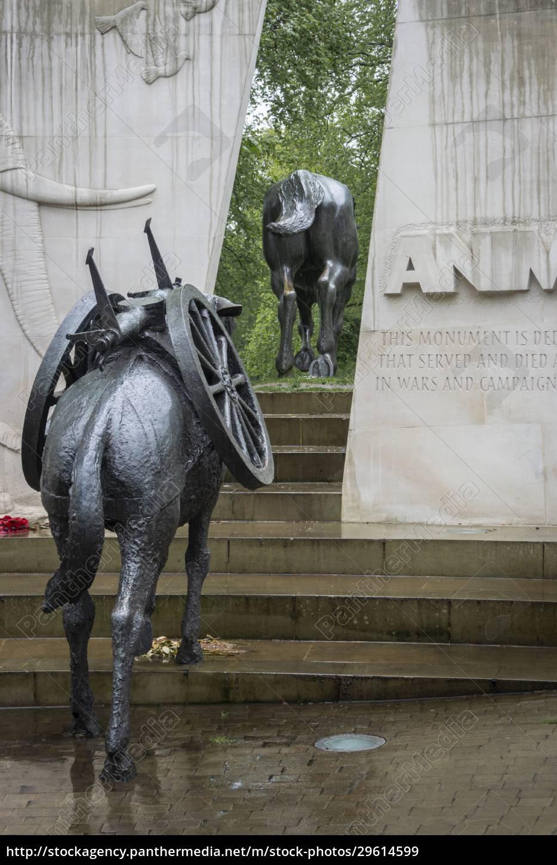 animals, in, war, memorial, , london, , uk - 29614599