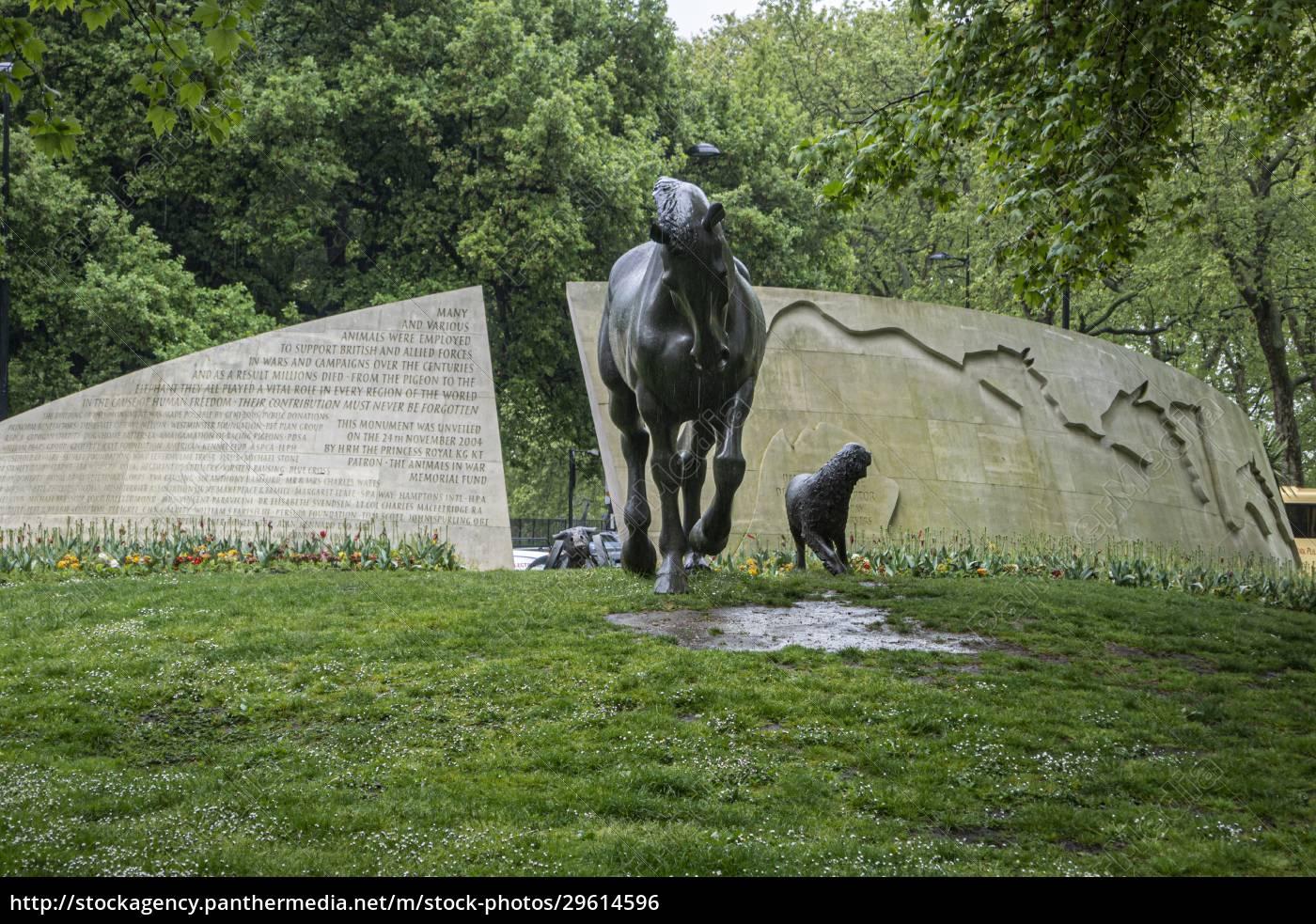 animals, in, war, memorial, london, vereinigtes, königreich - 29614596