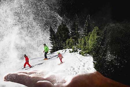 berg collage maennliche palme mit schnee