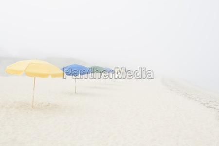 leerer strand mit sonnenschirmen und nebel