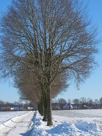 winterzeit in westfalen