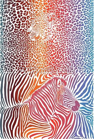 leopard und zebra mit farbhintergrund