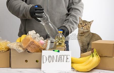 mann sammelt lebensmittel fruechte und dinge
