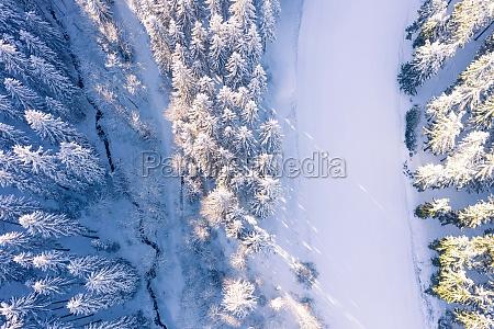 die luftansicht zeigt wald von schneebedeckten